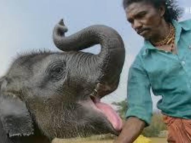 2bhk house sale at bandladuda // Hyderabad - 1